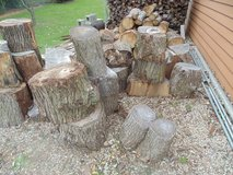 FREE FIRE WOOD in Orland Park, Illinois