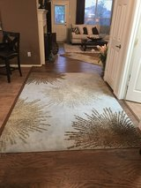 SAFAVIEH 6' x 9' Rug 100% Wool Pile in Houston, Texas