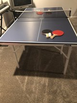 Ping pong table in Morris, Illinois