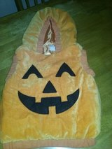 Pumpkin Costume in Fort Drum, New York