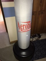 Punching Bag in St. Charles, Illinois