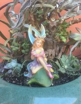 Fairy Garden in Travis AFB, California