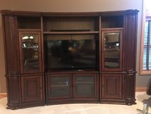 Entertainment Center in Oswego, Illinois