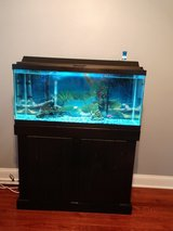 30 gallon fish tank with Stand in Camp Lejeune, North Carolina