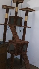 cat tower in Yucca Valley, California