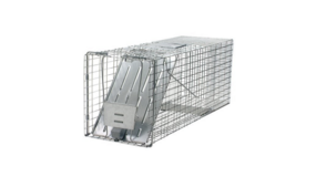Havahart 1079 Large 1-Door Humane Animal Trap for Raccoons, Cats, Groundhogs, Opossums in Beale AFB, California
