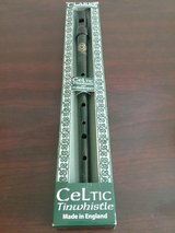 Celtic Tinwhistle in Byron, Georgia