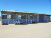 Safe, Professional Boarding in Yucca Valley, California