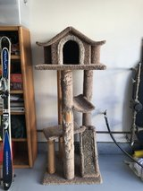 Cat condo in Oceanside, California