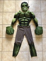 Hulk Costume in Fort Sam Houston, Texas