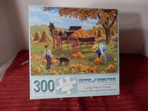 300 large piece puzzle in Chicago, Illinois