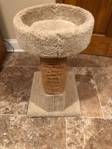 Cat Scratch Post and Bed in Westmont, Illinois