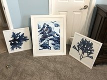Blue Print White Frame Pictures in Warner Robins, Georgia