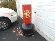 Punching bag in Yorkville, Illinois