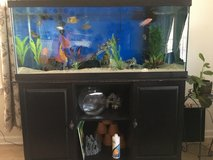 75 gallon fish tank/aquarium, stand, and filters in Hinesville, Georgia