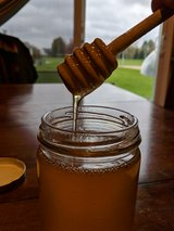 Raw Honey in Shorewood, Illinois