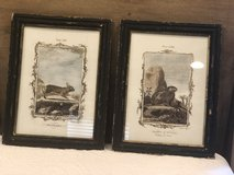 Rabbit framed Art Set in Fort Campbell, Kentucky