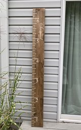 Grow chart ruler in Bolingbrook, Illinois