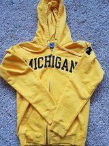 Michigan Hoodie in Chicago, Illinois