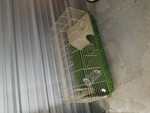 BUNNY CAGE, FOOD, & BEDDING in Camp Lejeune, North Carolina