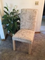 Two Gorgeous Cream Colored Side Chairs in Orland Park, Illinois