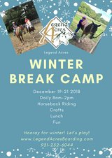 Horseback Riding Winter Day Camp in Dover, Tennessee