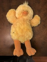 Build a Bear Duck/Chick in Oswego, Illinois