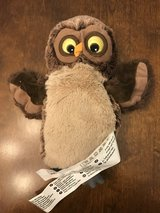 Owl Puppet in Chicago, Illinois