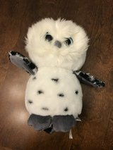 Stuffed Owl in Oswego, Illinois