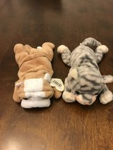 TY Beanie Babies in Naperville, Illinois