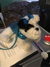 poochie and go dog purse with strap in Wilmington, North Carolina