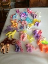 17 Ponies in DeKalb, Illinois