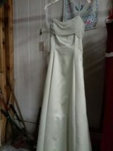 size 14 prom dress homecoming or just whenever in Macon, Georgia