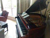 GoRgeOus D.H. Baldwin BABY GRAND in Kingwood, Texas