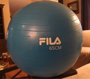 Exercise Ball/Pump in Yorkville, Illinois