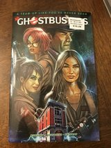 New! The New Ghostbusters Graphic Novel in Naperville, Illinois