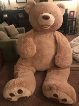 Giant Costco Teddy Bear in New Lenox, Illinois