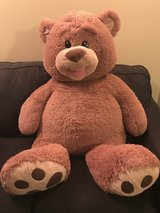 Teddy Bear in New Lenox, Illinois