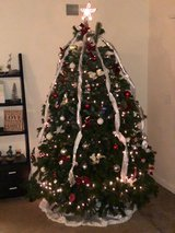 Christmas Tree in Vacaville, California