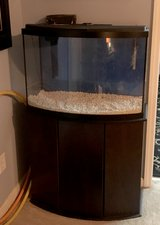 37 Gallon Bow Front Tank w/Stand, Filter, Heater, Background, Gravel, Top, and LED Light in Camp Lejeune, North Carolina