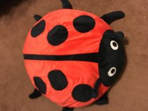 lady bug plush pillow in Alamogordo, New Mexico
