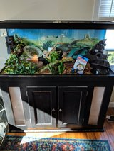 75 gal reptile tank with everything from A to Z. in Fort Campbell, Kentucky