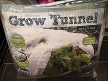 grow tunnel in Lakenheath, UK