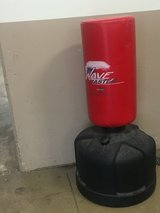 Wave Master Punching Bag in Bartlett, Illinois