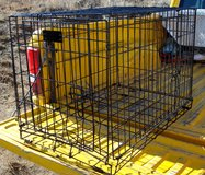 DOG Large Strong Metal KENNEL / CRATE in Ruidoso, New Mexico