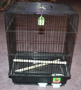 Small parakeet cage in Fort Campbell, Kentucky