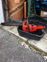Sear chainsaw in Beaufort, South Carolina