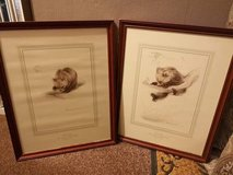 4 framed bear cub pictures in Lakenheath, UK