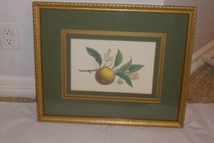 Triple matted Glass Framed Olive Green & Gold Framed Art in Sugar Land, Texas