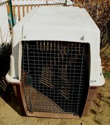 XL DOG KENNEL/CRATE HEAVY DUTY STURDY PLASTIC in Alamogordo, New Mexico